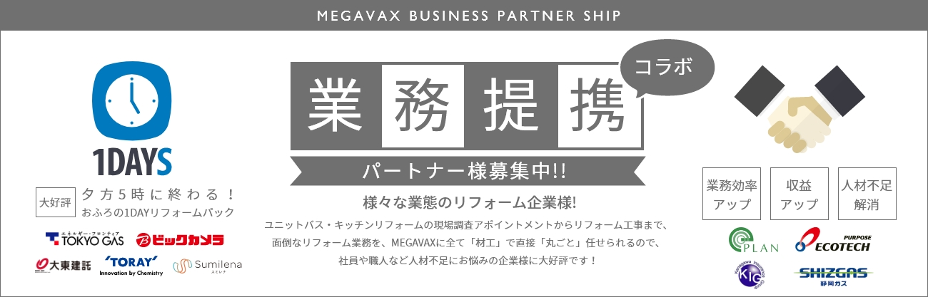 MEGAVAX BUSINESS PARTNER SHIP