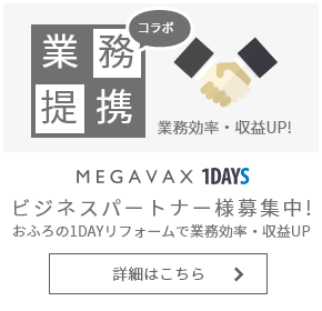 MEGAVAX BUSINESS PARTNER SHIP